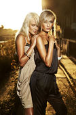Two elegant blond women — Stock Photo
