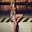 Glamour type photo of cute blonde sitting on the city bridge — Стоковая фотография