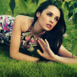 Young beauty brunette laying on the grass — Stock Photo #4580271