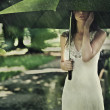 Royalty-Free Stock Photo: Summer rain