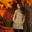 Young woman in a romantic autumn scenery — 图库照片