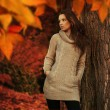 Young woman in a romantic autumn scenery - Stockfoto