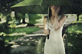Summer rain — Stock Photo