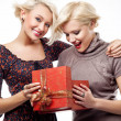 Two blond beauties holding a christmas present — Stock Photo #4597009