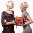Two blond beauties holding a christmas present — Stock Photo #4597015