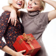 Two blond beauties holding a christmas present — Stock Photo #4597018