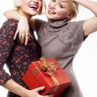 Two blond beauties holding a christmas present - Stock Photo