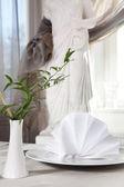Beautiful tableware and napkins — Stock Photo