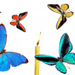 Stock Photo: Varicoloured butterflies