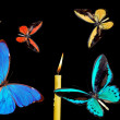 Varicoloured butterflies — Stock Photo