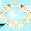 Frame from white roses on blue background — Foto Stock