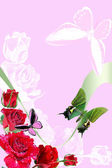 On rose background of the butterfly — Stock Photo
