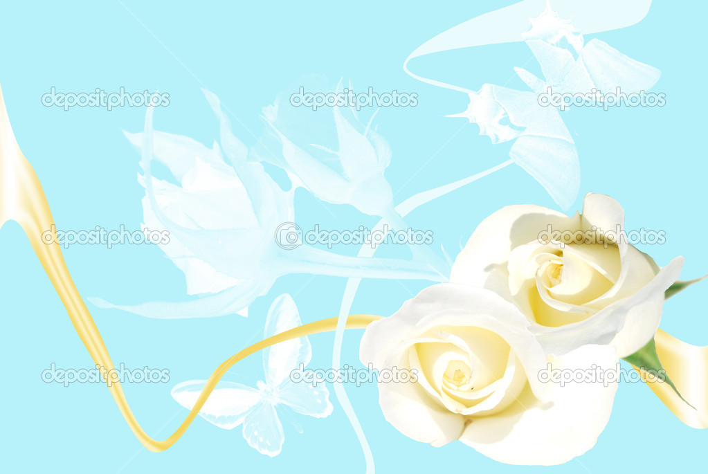 Frame from white roses on blue background with butterfly and shade — Stock Photo #3393637