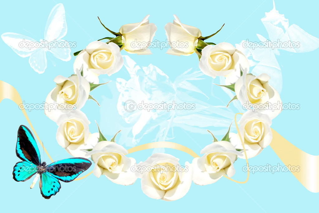 Frame from white roses on blue background with butterfly and shade — Stock Photo #3393792