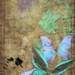 Butterflies on old vellum — Foto Stock