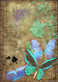 Butterflies on old vellum — 图库照片