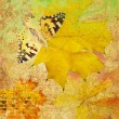 Zdjęcie stockowe: Butterfly and maple leafs grunge