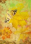 Schmetterling und maple leafs grunge — Stockfoto
