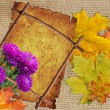 Asters and maple leafs with frame — Stock Photo