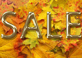 Autumn leaf background for sale — Stock Photo