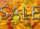 Podzimní listí pozadí na prodej — Stock fotografie