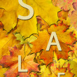 Autumn leaf for sale — Stockfoto