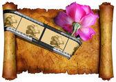 Eski parşömen üzerine pembe gül — Stok fotoğraf