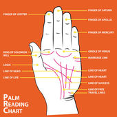 Palmistry map of the palm's main lines vector illustration — ストックベクタ