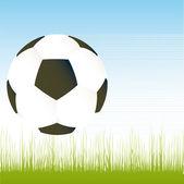 矢量足球比赛用球的插图世界杯 — 图库矢量图片