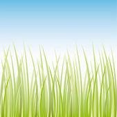 Vector grass illustration border background — Stock Vector