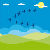 Birds migratory vector illustration cartoon — Stock Vector