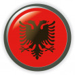 ALBANIA, shiny button flag vector illustration — Image vectorielle