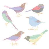 Set of cute vector birds — Stock Vector