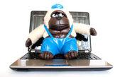 Affe mit einem laptop — Stockfoto