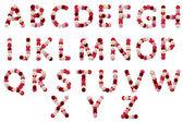 Buchstaben-blumen — Stockfoto