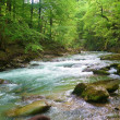 Flow in Chartreuse, France - Stock Photo