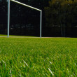Soccer field — Stock Photo #3305438