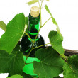 Wine bottle — Stock Photo #3225194