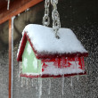 Bid House in Ice Storm — Stock Photo