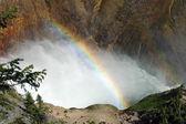 Regnbåge i yellowstone — Stockfoto