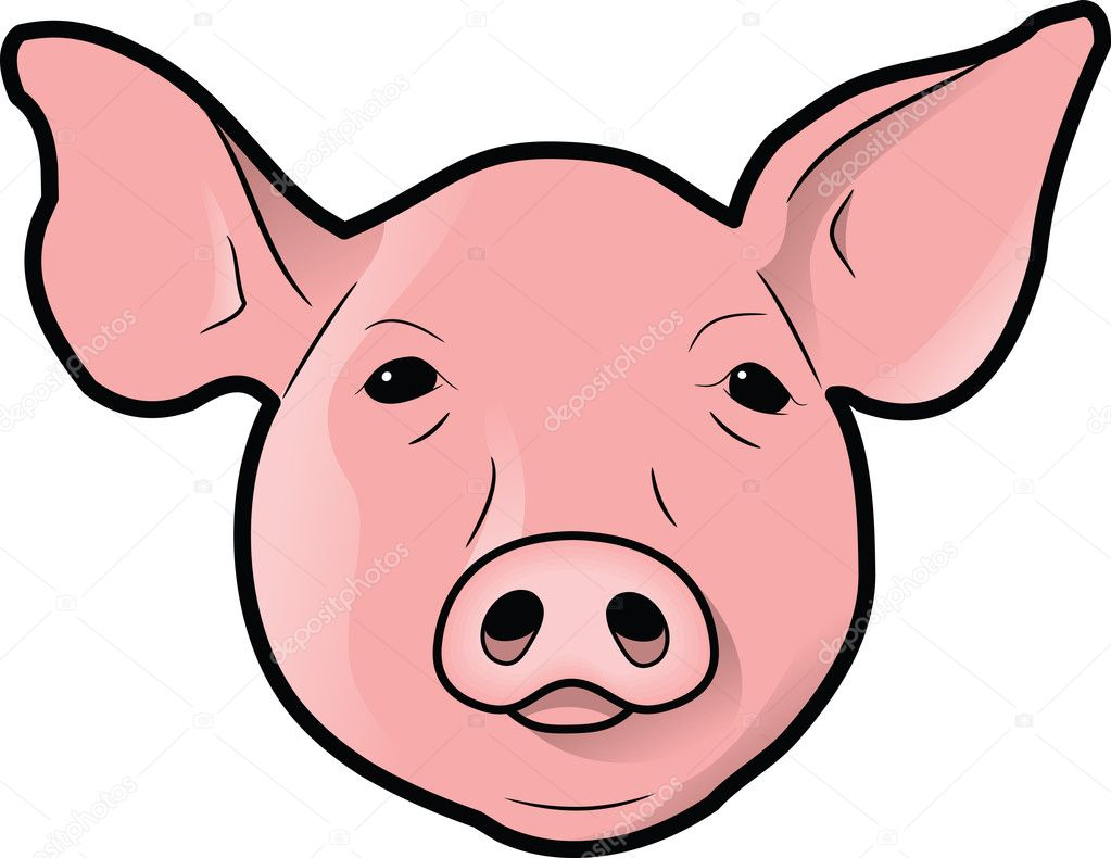 Pigs Head Stock Photo 3829503