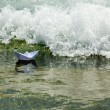 Paper boat now die in a huge wave - Stock Photo