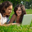 The boy and girl lying on the grass in the park with a laptop - Stock Photo