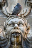Pigeon sitting on a sculpture — Stock Photo