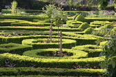 Palace garden of Idstein palace — Stock Photo