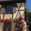 Half-timbered houses in the village centre — ストック写真