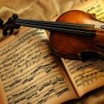 Vintage violin — Stock Photo #3440933
