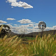 Stock Photo: karoo landscape