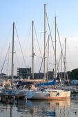 Sailing yachts at harbor — Stock Photo