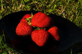 Strawberry on the plate — Stock Photo